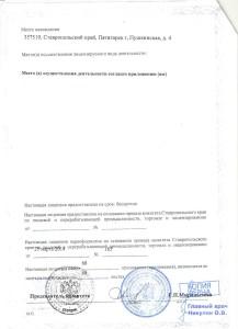 Лицензия на медицинскую деятельность 2 стр.